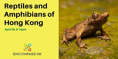 Reptiles and Amphibians in Hong Kong tickets