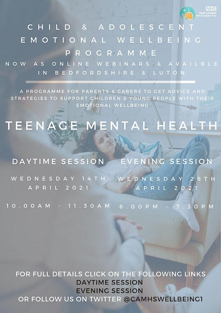 Teenage Mental Health (PM session) image