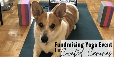 Fundraising Yoga Event for COVETED CANINES tickets