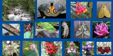 This Is What Biodiversity Looks Like ! tickets