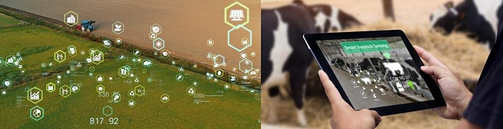 Funding Fit: Farming Innovation Pathways (FIP) image