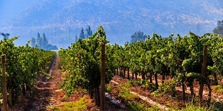 The Wines of Chile tickets