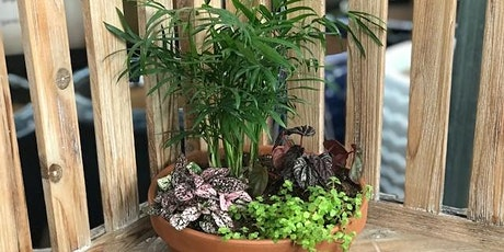 Adult Dish Garden Workshop - Frankfort tickets