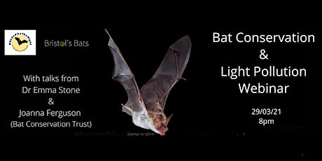 Bat Conservation and Light Pollution - How you can help. tickets