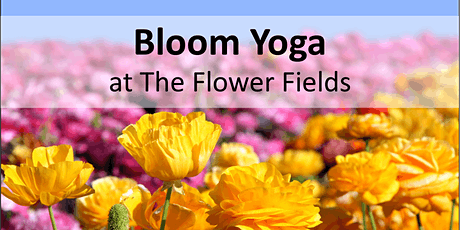Bloom Yoga at The Carlsbad Flower Fields tickets
