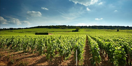 Vertical Endeavors -- A Virtual Vertical Burgundian Wine Experience tickets