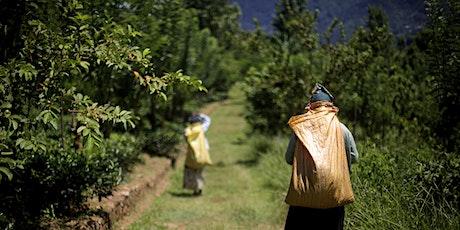 Sri Lanka's Artisanal Tea Sector tickets