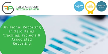 Divisional Reporting in Xero Using Tracking, Projects & Reporting tickets