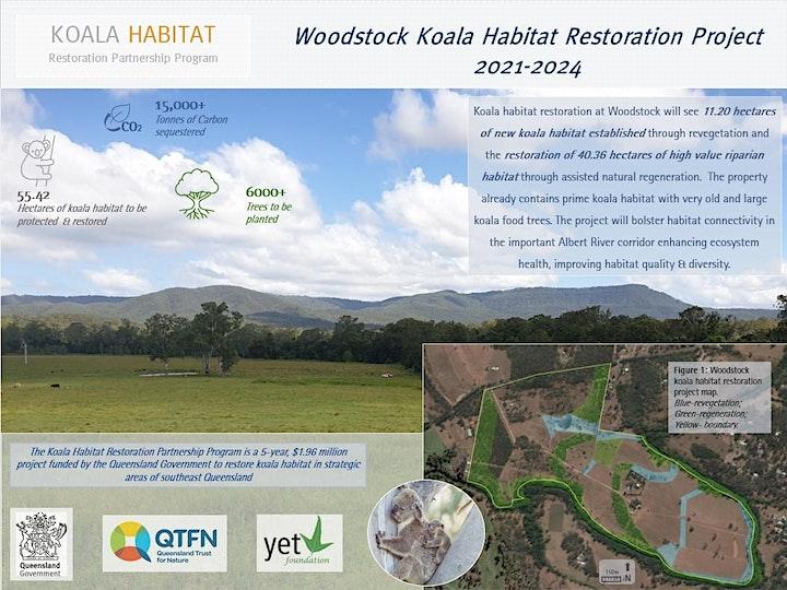 KHRPP Woodstock Koala Tree Planting image