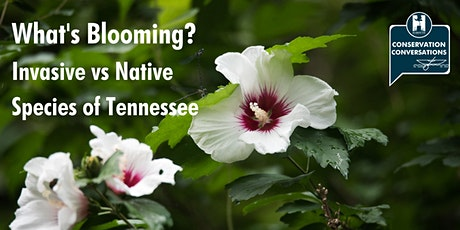 Conservation Conversations: What's Blooming? tickets