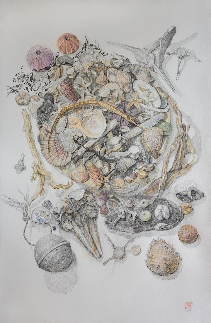 Sahoko Blake | Artist Talk image