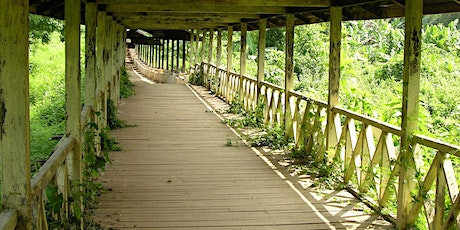 Navigating a Path Back to Health: practical support for longcovid sufferers tickets