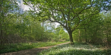 Wildlife Live Webinar - Nature reserves of Suffolk (EWC 2821) tickets