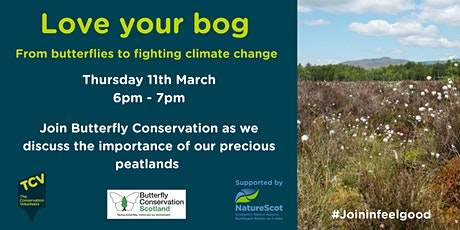Love your bog – from butterflies to fighting climate change tickets
