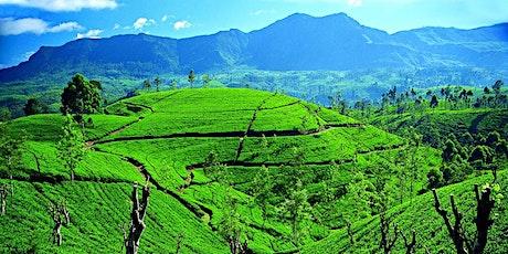 Zoom Around the World -Sri Lanka tickets