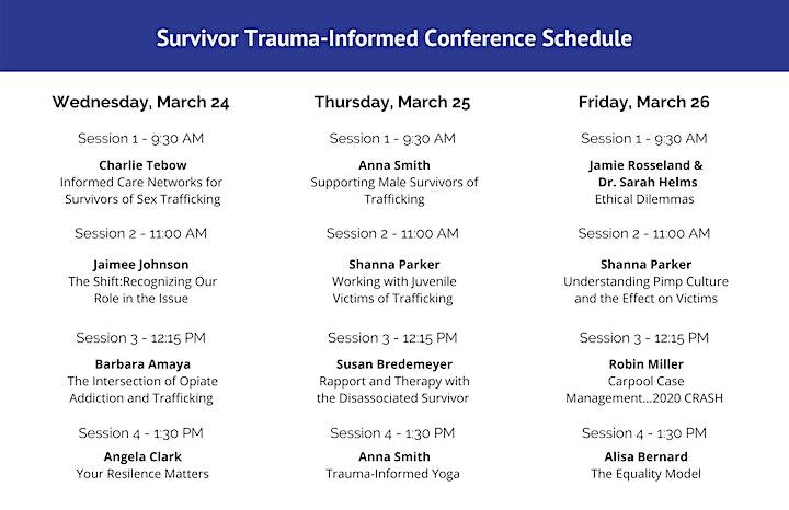2021 Survivor Trauma Informed Care Virtual Conference image