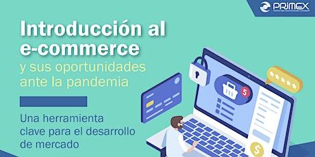 Introducción al e-commerce y sus oportunidades ante la pandemia entradas