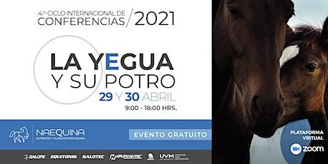 Naequina 2021 entradas