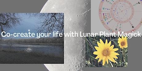 Lunar Plant Magick preview class tickets