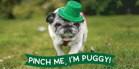 Pinch Me, I'm Puggy! tickets