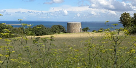 Victoria Tower Wildflower and Folklore  - Spring Walking Festival tickets