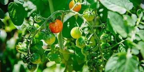 Vegetable Gardening 101 tickets