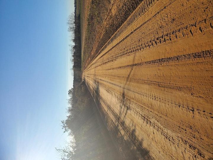 Mayhaw Gravel Grind image