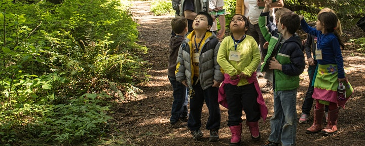 River Adventures Summer Camp - Forest Ramblers image