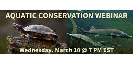 NAYPW UofT Hub Webinar Series: Aquatic Conservation tickets
