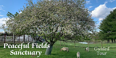 Guided Tour of Peaceful Fields Sanctuary tickets