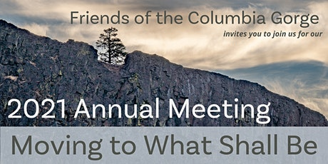 41st Annual Meeting - Virtual tickets