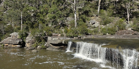 Bush Explorers - 'Autumn Almanac' - Serenity Stroll - The Basin tickets