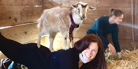 St Pattys Day Goat Yoga & Adult Scavenger Hunt for Gold tickets