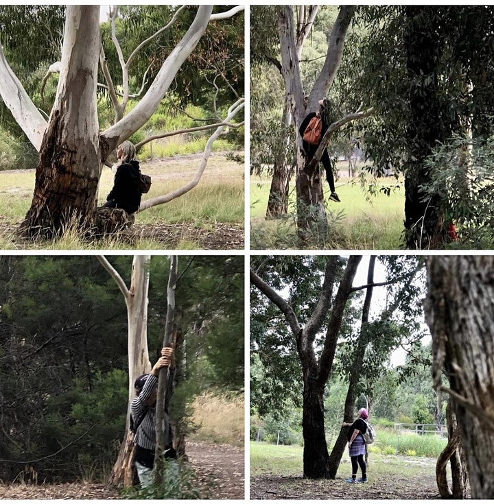 Forest Therapy Melbourne-restoring sensory walk-Merri & Edgars Creeks CC WC image