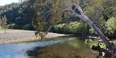 Camping on Licences River Frontages tickets