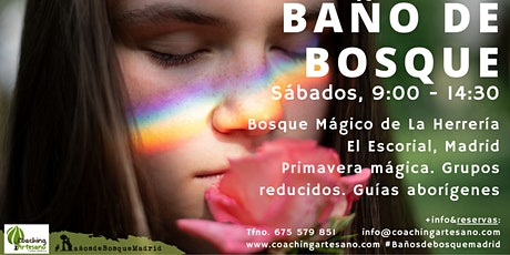 Baño de Bosque sáb  15 Mayo Primavera Bosque La Herrería El Escorial entradas