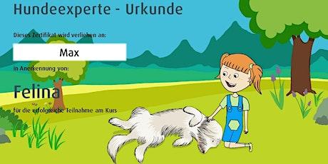 Online-Hundeexperte-Kurs Tickets