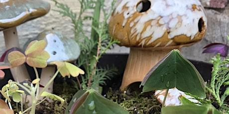 Design Time - Medium Size Dish Garden (3-5 plants) tickets