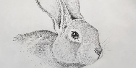 Get Drawing: Spring Rabbits Workshop tickets