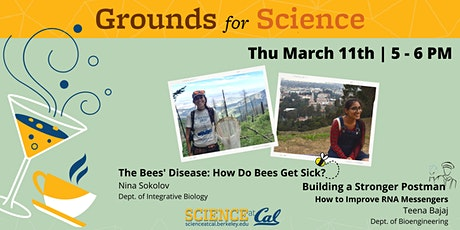 The Bees' Disease & Building a Stronger Postman tickets