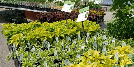Annual Spring Plant Sale Timed Ticket - Sat, April 24, Noon-1:30pm Visit tickets