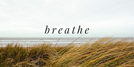 Breath Work & Meditation : An Introduction to SKY Breath Meditation tickets