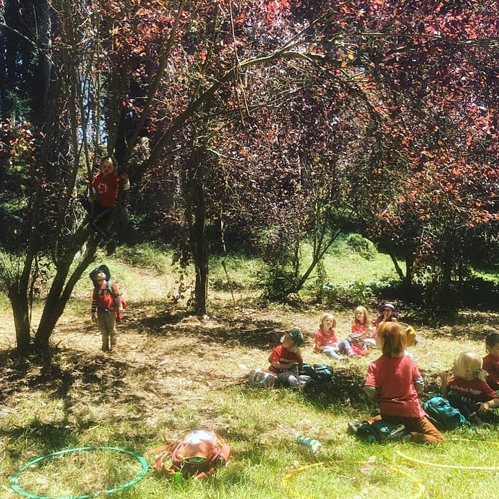 Mighty Bambinis - Southern Marin Forest Preschool - Open House image