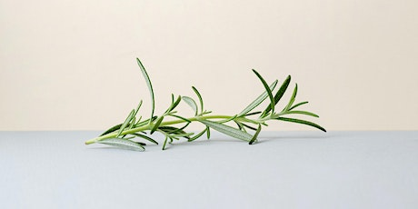 School Holidays Workshop | Rosemary for ANZAC Day tickets