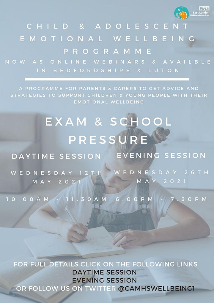 Exam & School Pressure (PM session) image