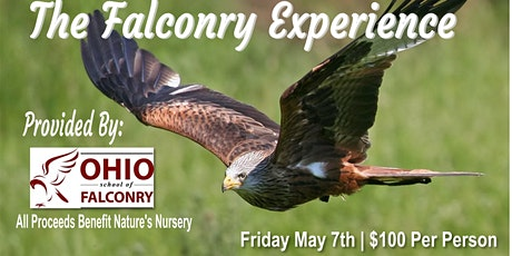 A Falconry Experience tickets