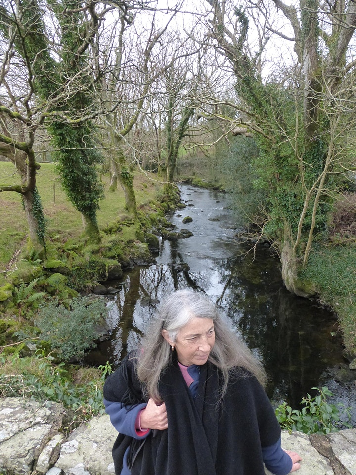 Travelling in Story with Priestess Storyteller Christine Watkins image