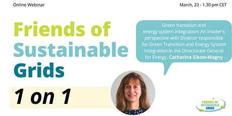 Green transition and energy system integration: An insider's perspective tickets