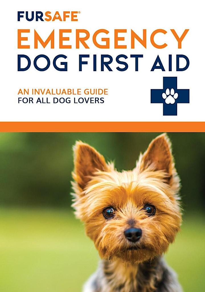 Dog First Aid Training - Cleveland image