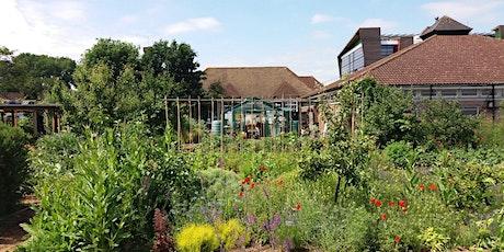 Hammersmith Community Gardens Professional Tour Online tickets